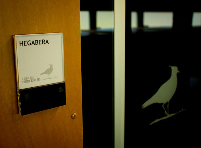 http://grafiksarea.com/wp-content/uploads/URDAIBAI-web-11.jpg